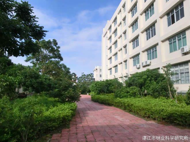 岭南师范学院园林规划设计